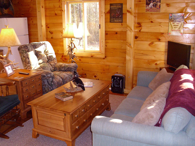Log cabin kit inside view