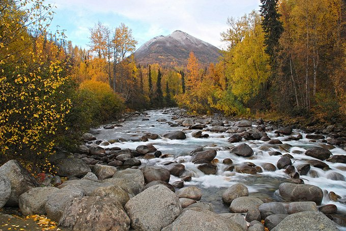 Near Palmer Alaska