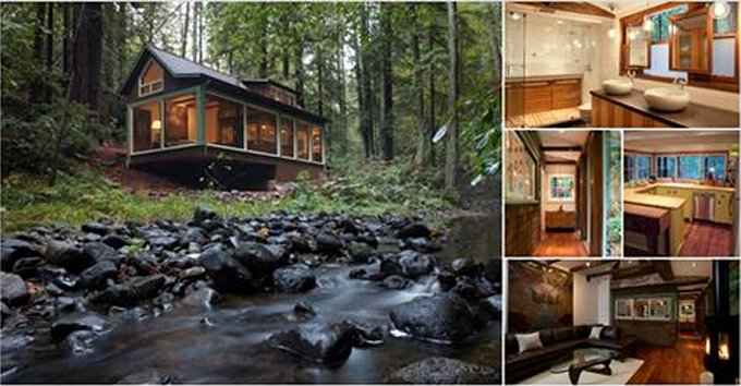 Tiny Home Designs: Cozy Cabin In California With Modern Interior