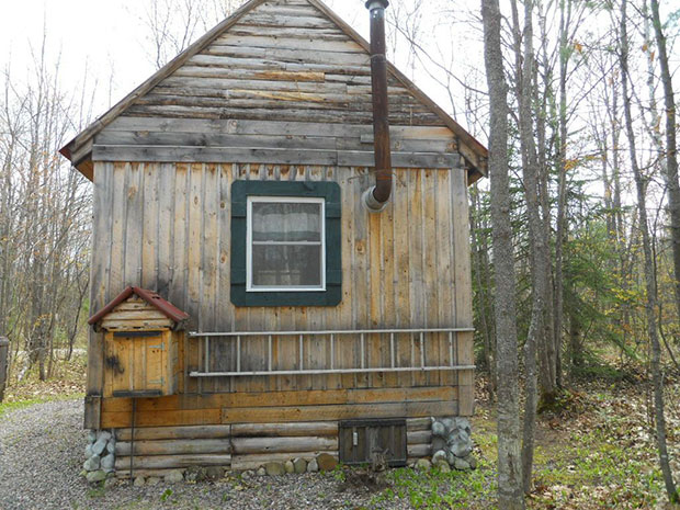 Cabin for sale back