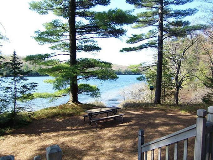 Lakefront cabin views