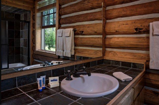 Cabin in Idaho