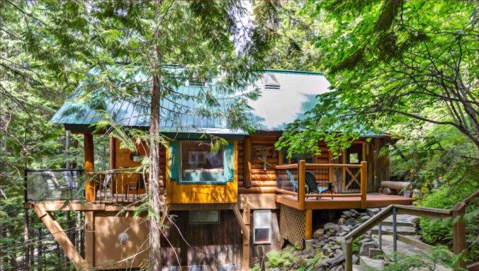 Mountainside log cabin