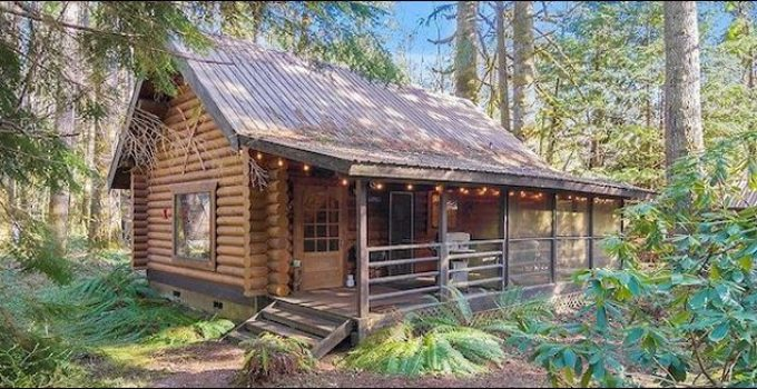Log cabin in the forest