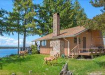 Beach cabin